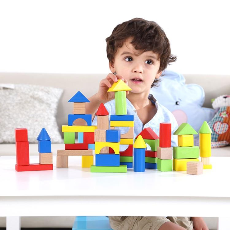 Tooky Toy BLOQUE DE 50 PIEZAS